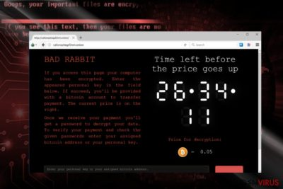 Skærmbilledet af BadRabbit betalingssted