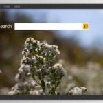 Bing omdirigeringsvirus snapshot