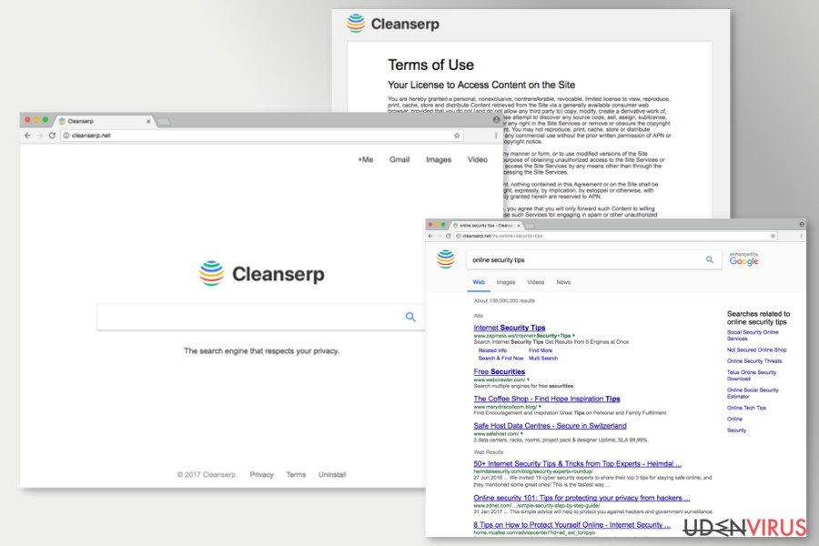 Billedet af Cleanserp.net