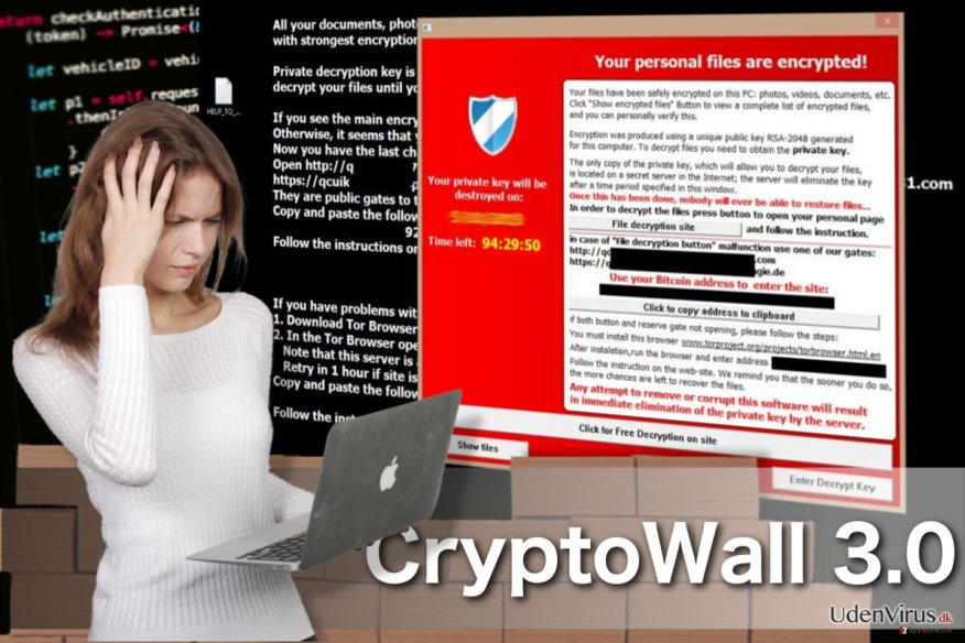 CryptoWall 3.0 virus snapshot