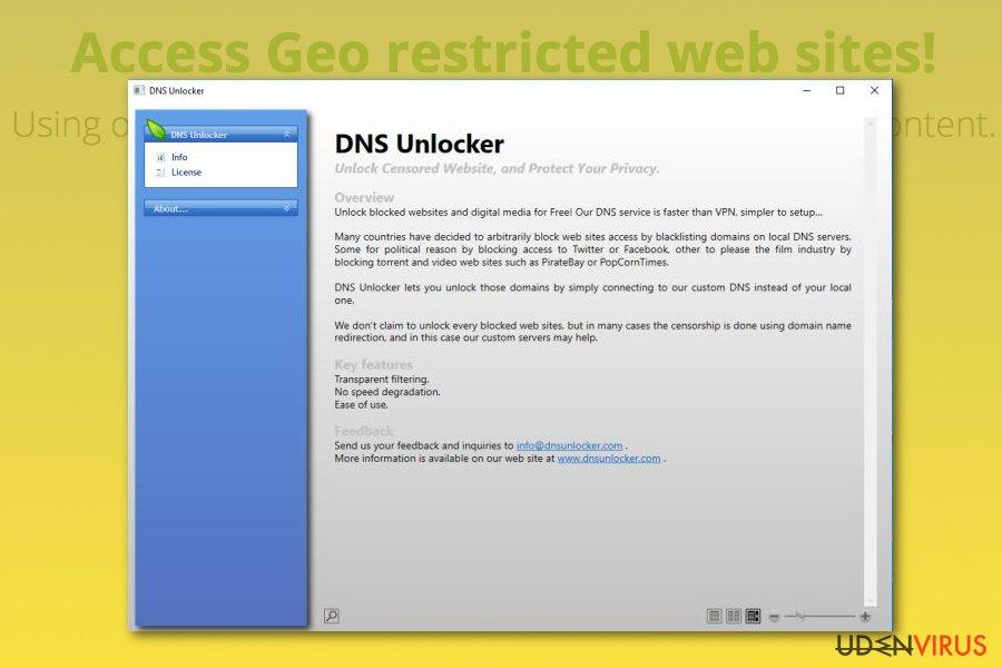 DNS Unlocker snapshot