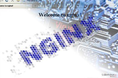 Billedet illustrerer Nginx malware