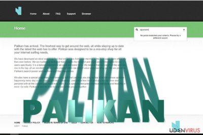 Palikan.com redirect