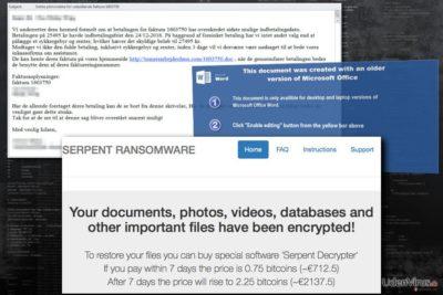 Billede af Serpent ransomware virus