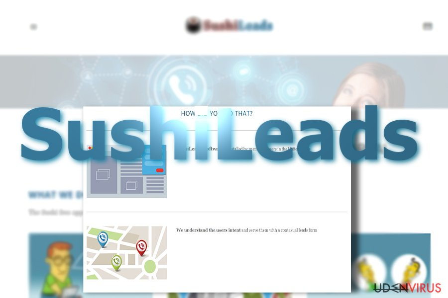 Annoncer fra SushiLeads snapshot