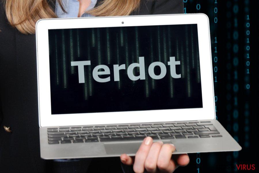 Billedet af Terdot malware