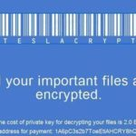 TeslaCrypt virus snapshot