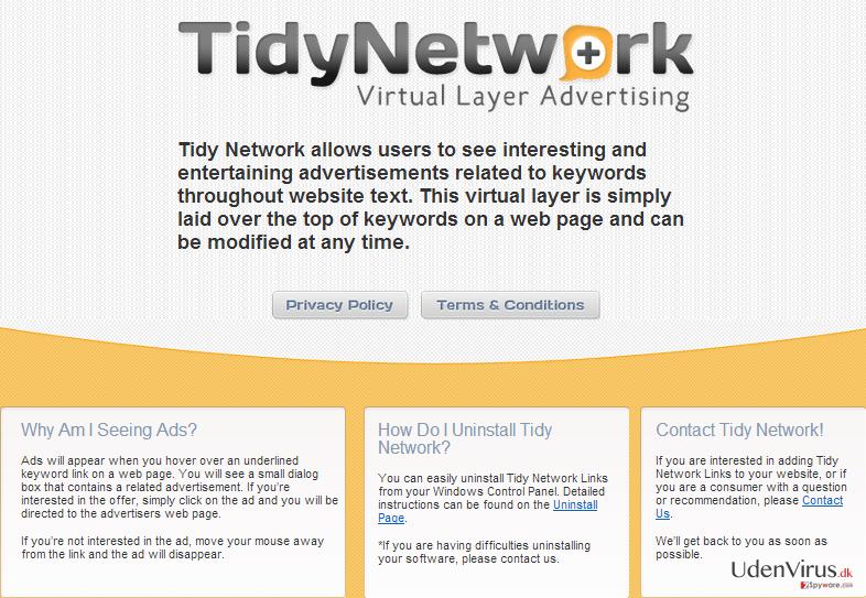 TidyNetwork.com snapshot