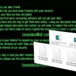 Wallet ransomware virus snapshot