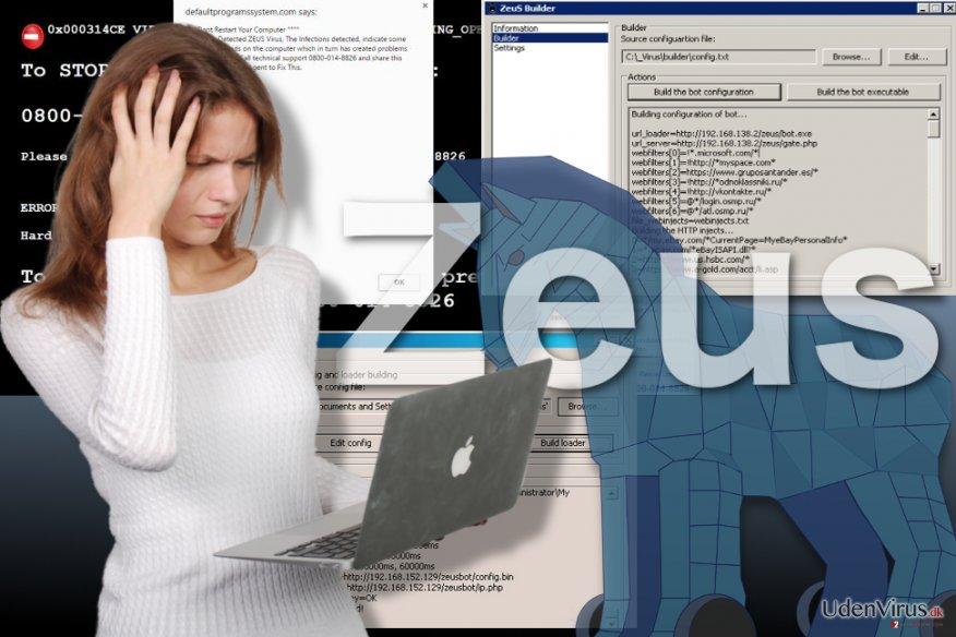 Billede af Zeus virusen