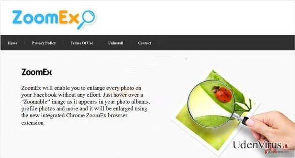 ZoomEx annoncer snapshot